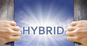 Growth of hybrid