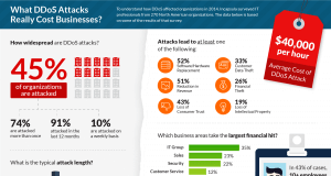 ddos-impact-survey-infographic-hires