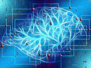 Cyberwarfare: the New AI Frontier